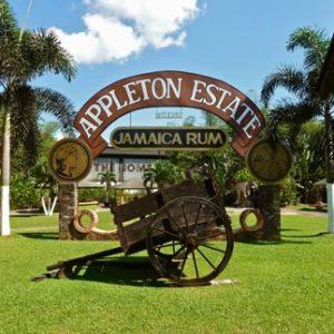 Appleton Estate Rum Tour